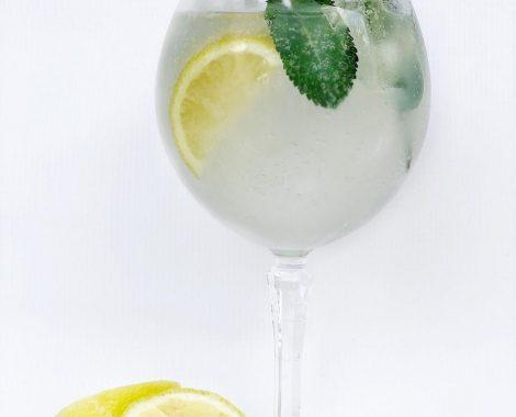 Ginnic Dry Lemon
