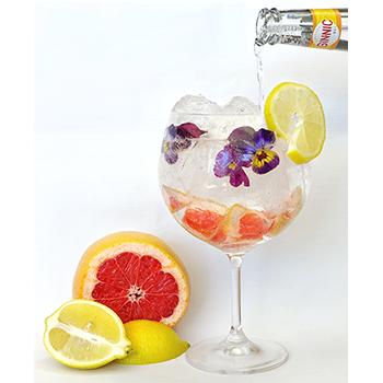Ginnic_Original_Drink_01